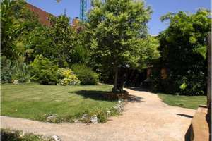 Investment for sale in Barajas, Madrid.