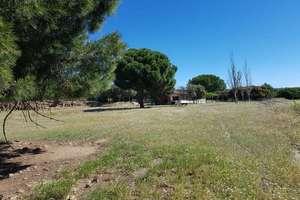Terreno rústico/agrícola venta en Urb. Cuesta Vieja, Navas del Rey, Madrid.