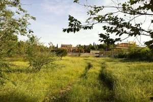 Plot for sale in Urb. Somosaguas, Pozuelo de Alarcón, Madrid.